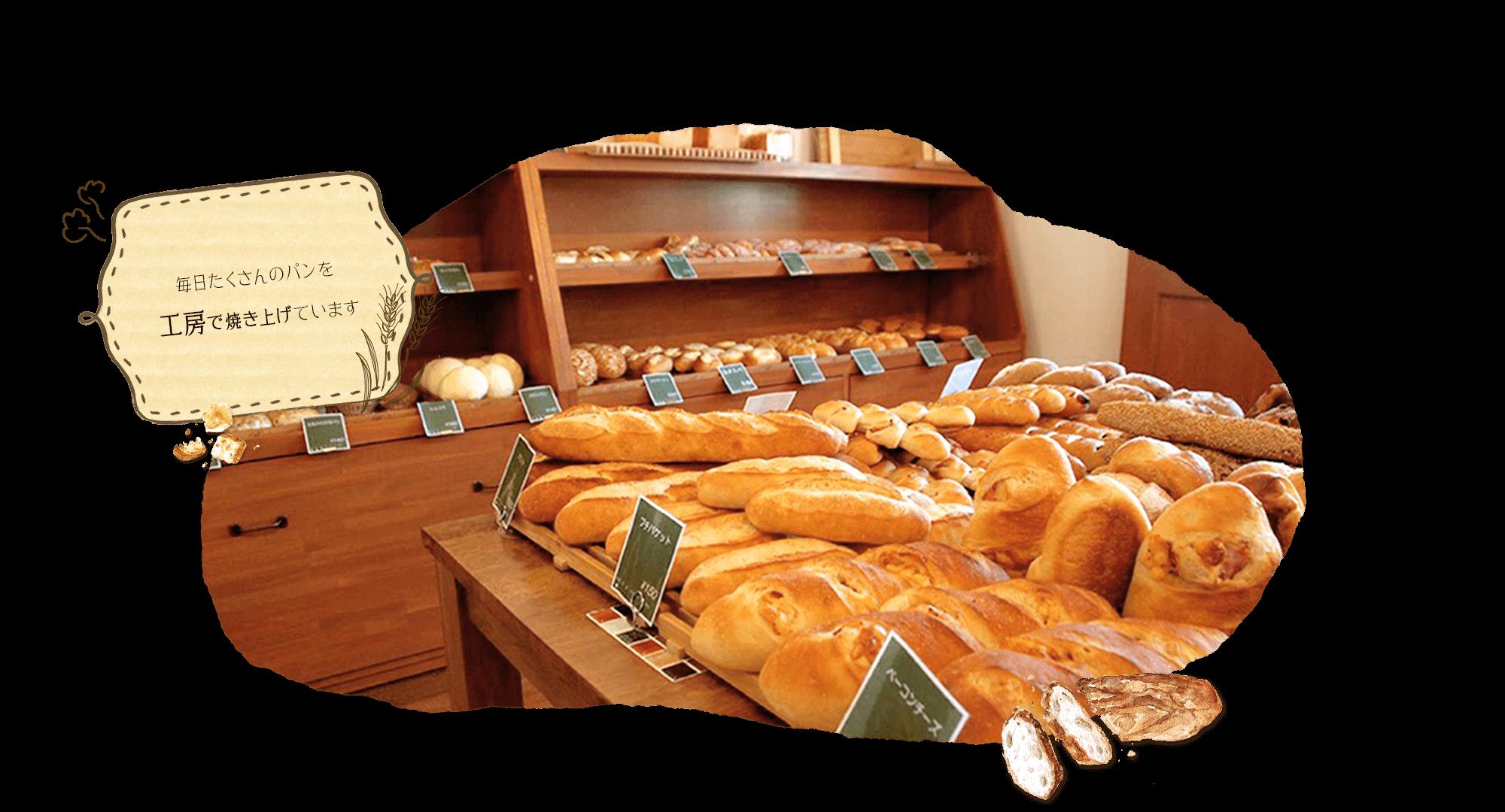 毎日たくさんのパンを工房で焼き上げています